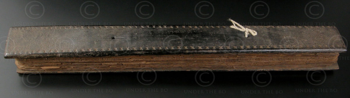 Kerala medicinal manuscript IN400. Kerala, Southern India.