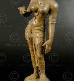 Parvati debout bronze 09KB4C. Tamil Nadu, Inde du sud.