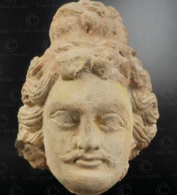 Gandhara bodhisattva head PK250. Ancient Buddhist kingdom of Gandhara. Found in the valley of Swat, Northern Pakistan.