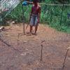 Iban boar trap charm BO273. Iban Dayak culture, Entipan village, West Kalimantan, Borneo island.