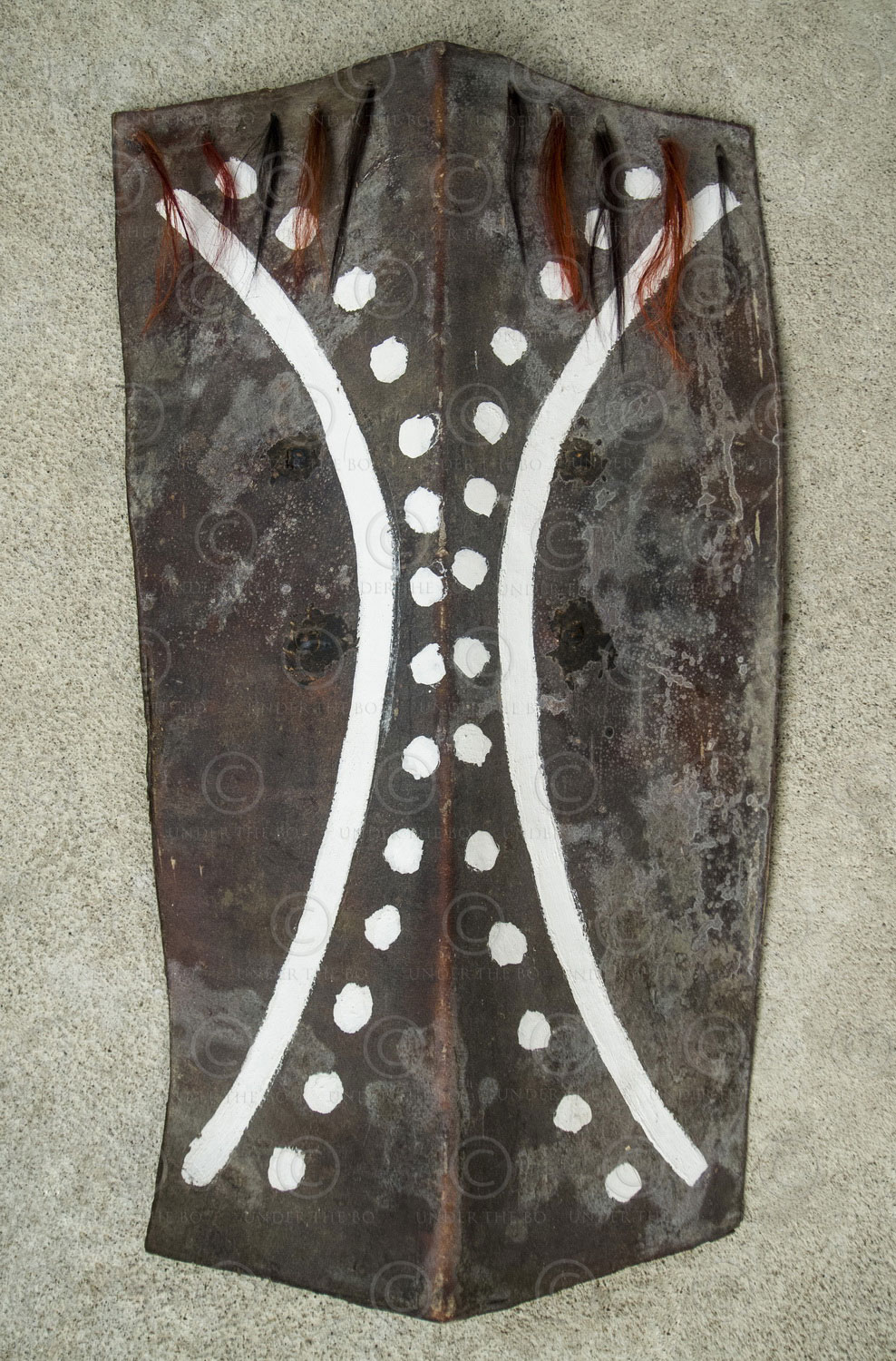 Naga shield NA66C. Nagaland, North-Eastern India